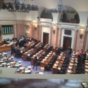 Our view from the House Gallery before being recognized by Speaker Greg Stumbo